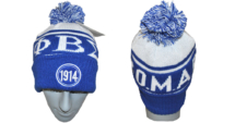 PBS Beenie Blue (2015_08_04 20_03_47 UTC)